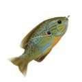 LiveTarget Sunfish Hollow Body